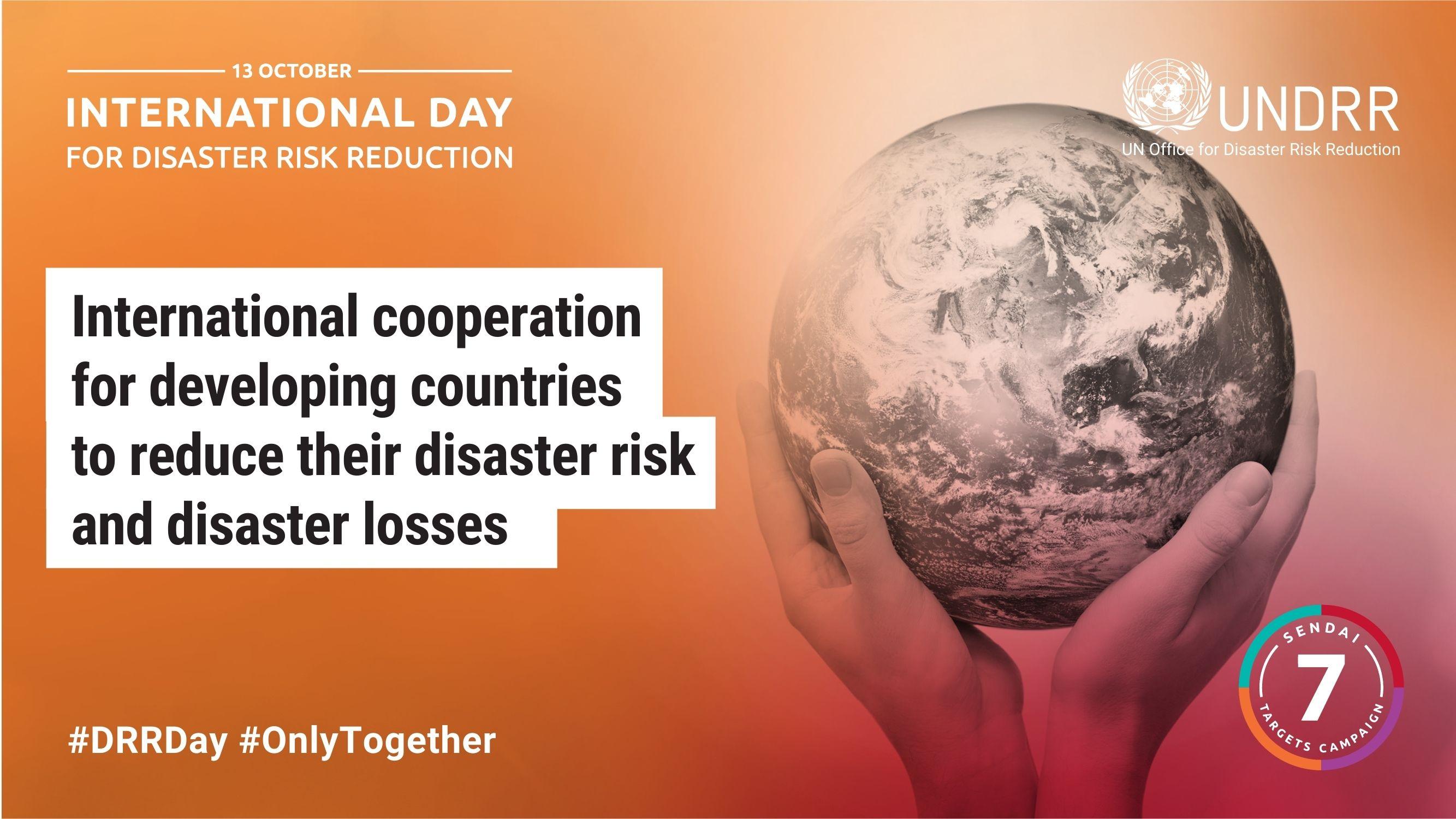 Logo Internationdal Day For Disaster Risk Reduction: zwei Hände halten einen Erdball