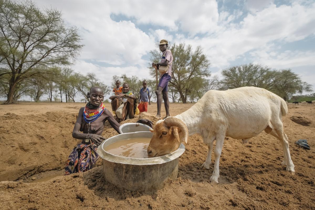 Eine Ziege trinkt aus einem Eimer mit schmutzigem Wasser. Hinter ihr stehen einige Menschen um ein Loch herum, der Boden ist ausgetrocknet.
