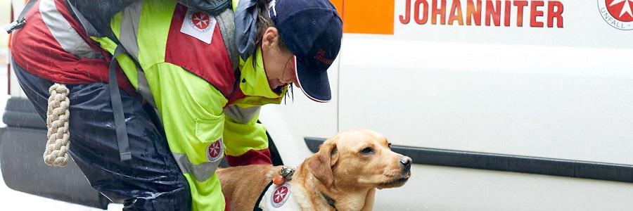 Mensch und Hund bilden ein starkes Team.