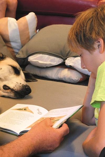 Zur Ausbildung eines Lesehundes gehört auch ein Praxisseminar, in dem er gemeinsam mit dem Hundehalter auf seinen Einsatz in der Schule vorbereitet wird.