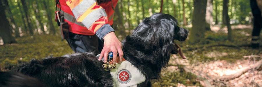 Die Vierbeiner der Rettungshundestaffel werden bestmöglich für die Vermisstensuche ausgebildet.