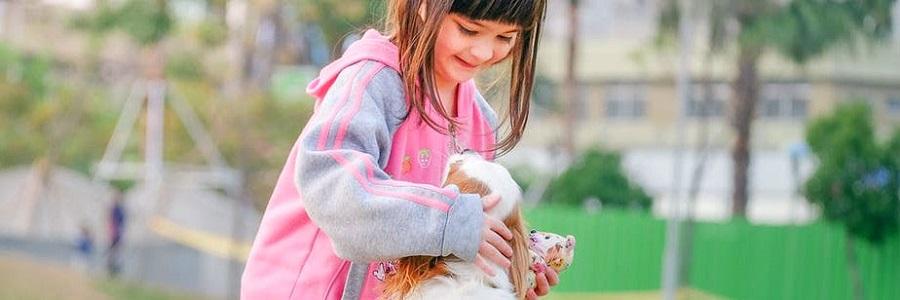 Beim Spielen mit einem Hund können Kinder für kurze Zeit ausgelassen sein und ihre schwere Krankheit vergessen.