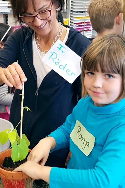 Die Kinder pflanzen eine kleine Pflanze um das Leben zu beobachten.