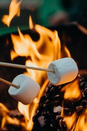 Marshmallows über einem Lagerfeuer