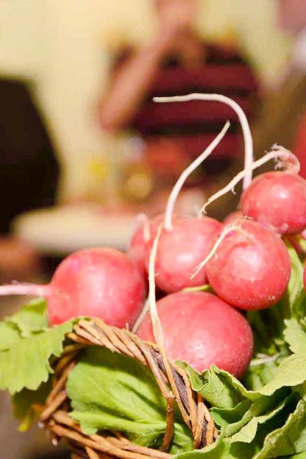 Radieschen sind das Wahrzeichen der Lebensmittelausgabe der Johanniter in Berne.