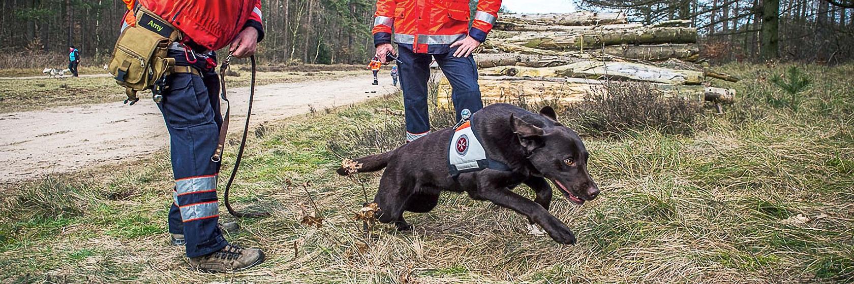 Wenn Menschen vermisst werden kommt die Johanniter Rettungshundestaffel Schleswig zum Einsatz.