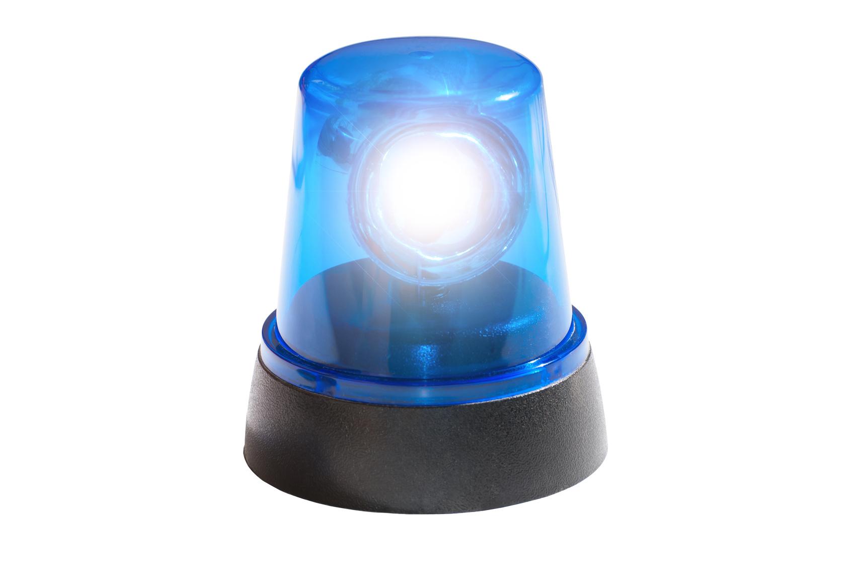 Logo der Blaulichtzwerge