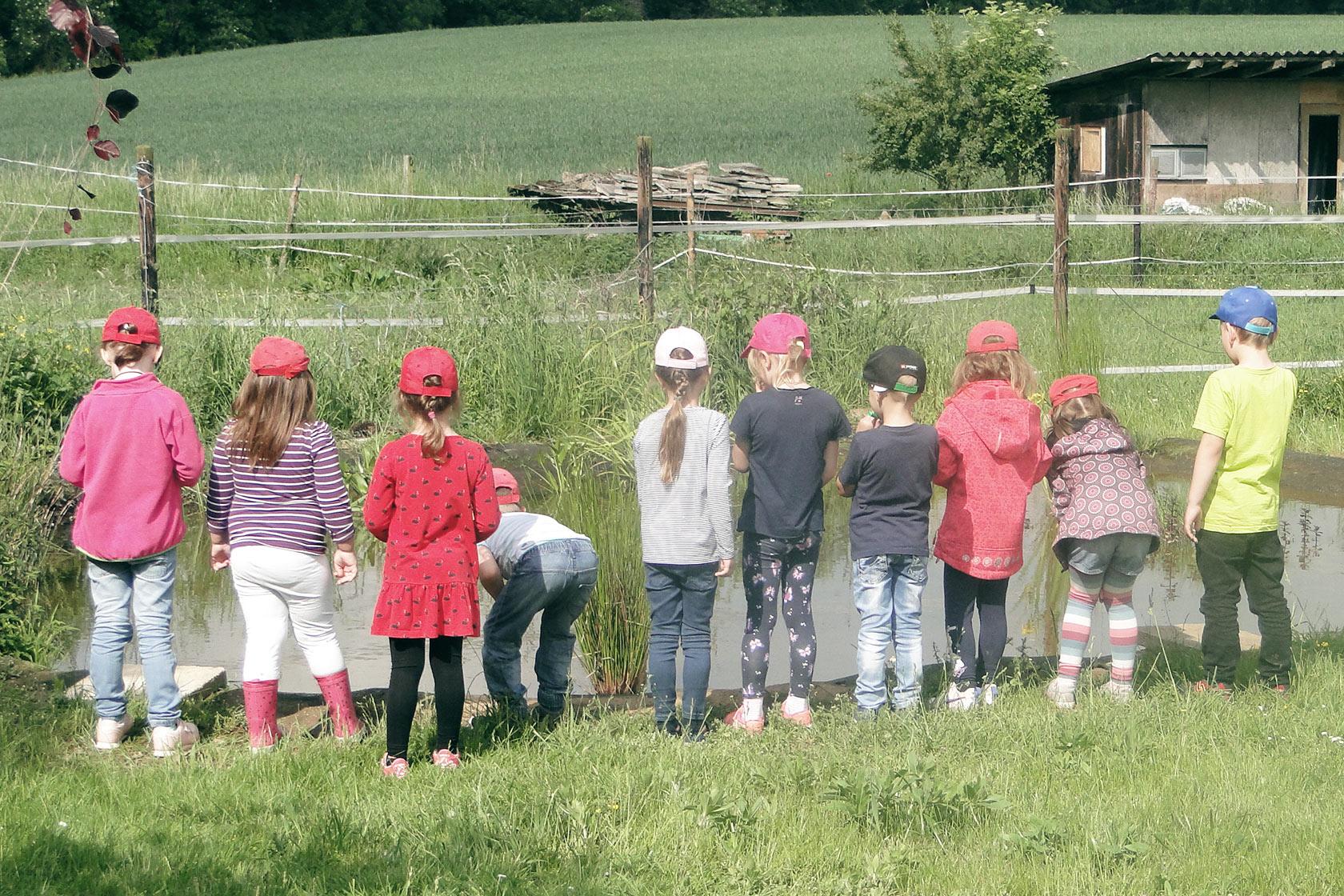 Kinder sind von hinten zu sehen, wie sie das Leben in einem Tümpel beobachten.