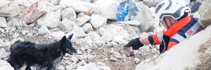 Unsere Rettungshundeteams retten Leben, wenn sie vermisste Kinder, verschüttete Menschen, verunglückte Wanderer oder demente Personen aufspüren.