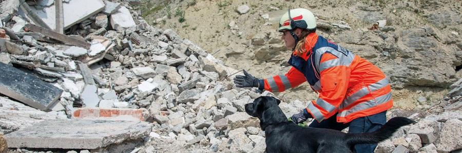 Hunde hören und riechen viel besser als Menschen. Deshalb können sie auch Verunglückte aufspüren, die unter Trümmern verschüttet sind.