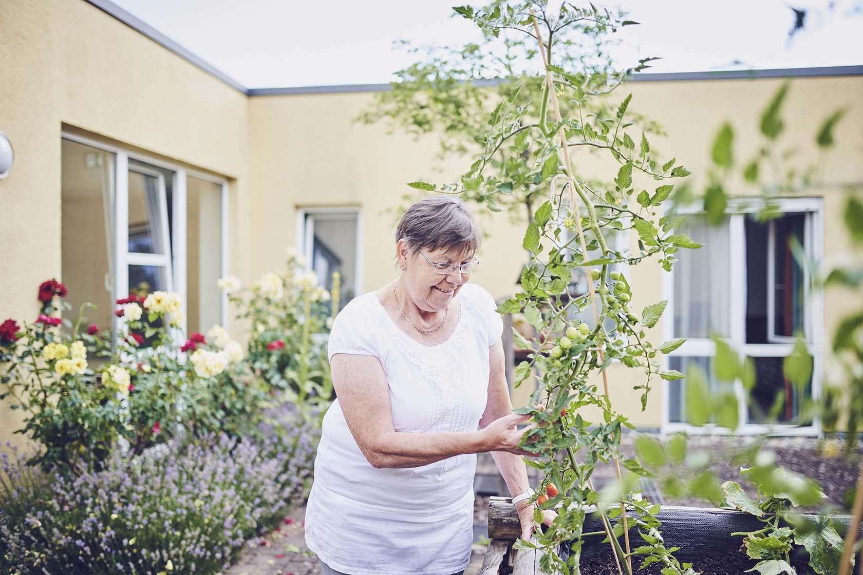 Eine Bewohnerin bei der Gartenarbeit