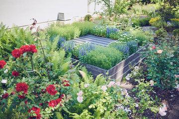 Bunte Blumen wachsen in Beeten und Hochbeeten am Johanniterhaus