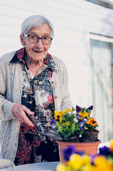 Eine Dame in einer grauen Jacke pflanzt Blumen ein