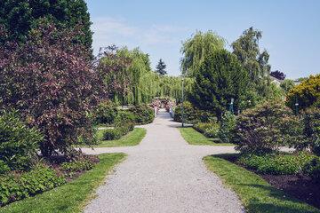 Verschiedene Wege im gepflegten angelegten Garten in Uetersen in der Einrichtung Haus am Rosarium.