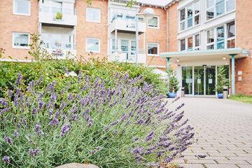 Blick über einen schönen Lavendel zum Eingangsbereich des Johanniter-Stift