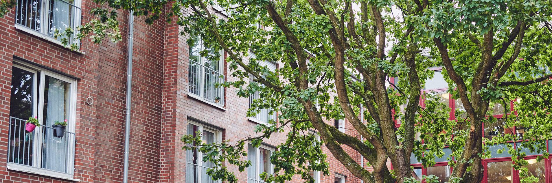 Innenhof mit großem Baum und Bank zum Ein- und Durchgang der zwei Häuser im Johannter-Zentrum Kaarst.