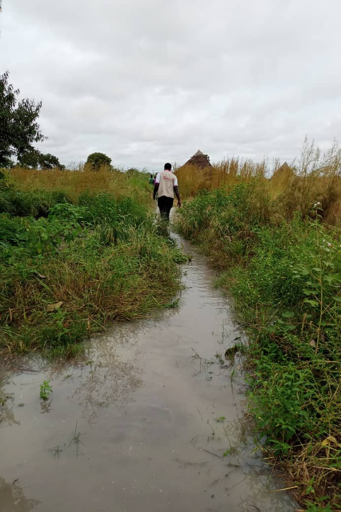 Ein überschwemmter Garten