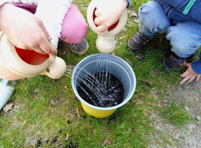 Zwei Kita-Kinder gießen gleichzeitig, jeweils mit einer kleinen Gießkanne, die so eben eingepflanzten Sonnenblummenkerne.