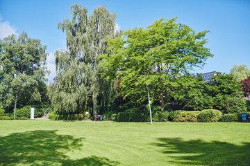 Blick über eine großzügige Rasenfläche auf eine Baumgruppe am Johanniter-Haus