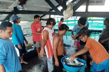 Männer stehen um einen Eimer voller Fische