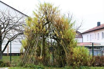 """Naturtipi im Garten der Johanniter-Kinderkrippe """"Turmwichtel"""" Bad Abbach"""