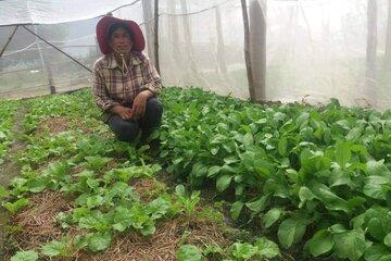 Cheng Soveth in ihrem Gemüsegarten