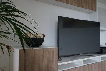Fernsehgerät neben Zimmerpflanze