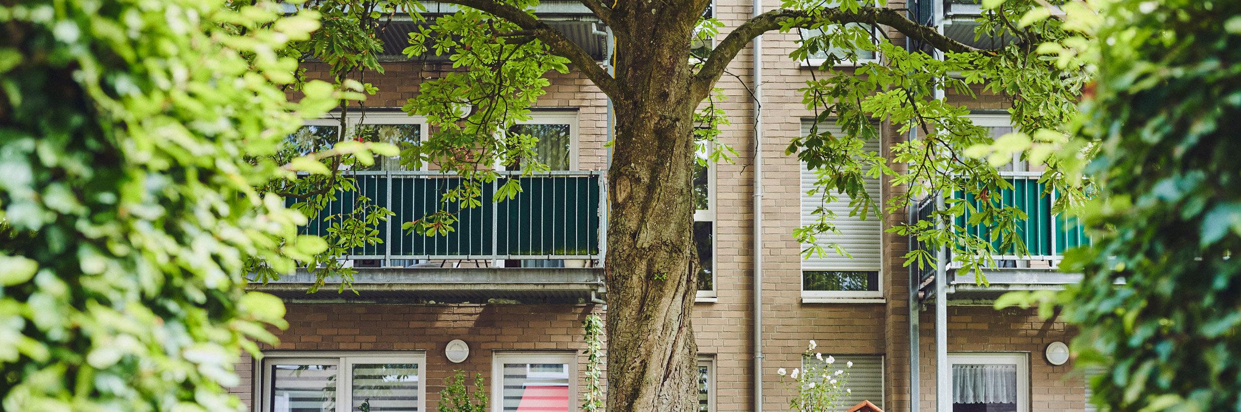 Gartenbank unter einem großen Baum  in der Anlage Johanniter-Stift Köln Flittard.