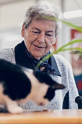 Eine Seniorin beobachtet eine schwarz-weiße Katze