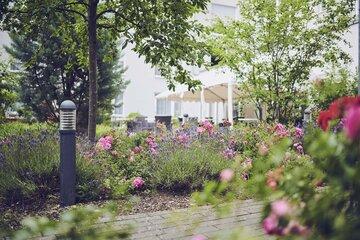 Blumen im Garten des Johanniter-Stifts Karben
