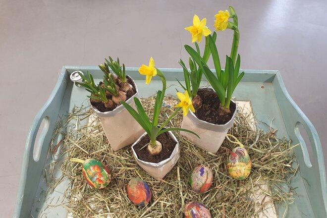 Drei bepflanzte Blumentöpfe aus alten Getränkekartons frühlingshaft dekoriert