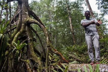 Ein Mann auf einer Mangrovenbaumwurzel