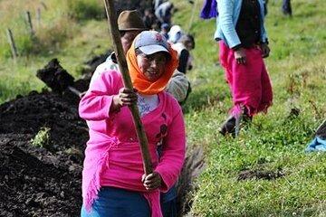 In den Provinzen Pichincha und Imbabura in Ecuador verlegen die Johanniter gemeinsam mit der Partnerorganisation IEDECA und der örtlichen indigenen Bevölkerung unterirdische Wasserleitungen.