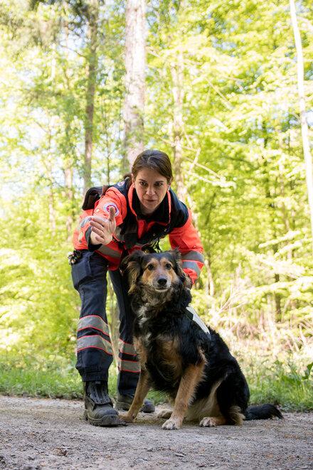 Eine Frau weist fordert ihren Hund zu Suche auf