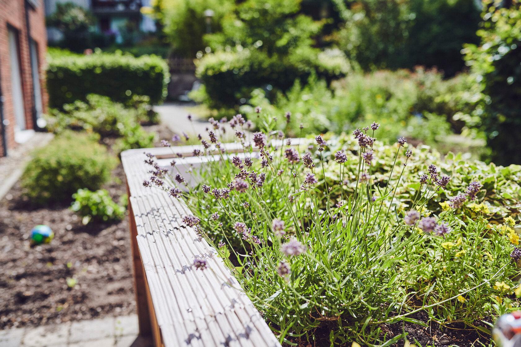 Anpflanzung im Garten des Johanniter-Stiftes Wuppertal