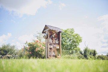 Insektenhotel auf einer grünen Wiese