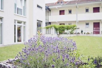 Blumen im Garten des Johanniter-Hauses Lorsch