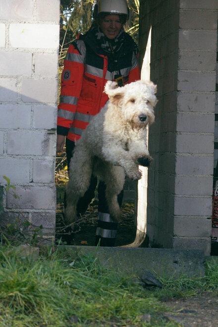 Ein weißer Hund freut sich über seine Belohnung. Im Hintergrund eine Johanniter-Helferin in Einsatzkleidung