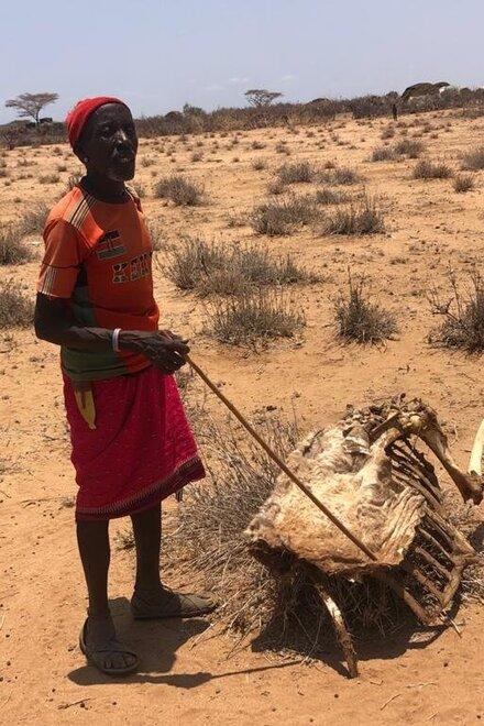 Ein Mann steht auf einem ausgetrockneten Boden neben seinem verendeten Vieh