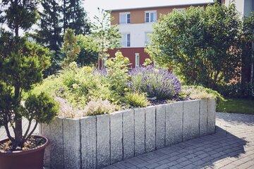 Anbau im Hochbeet im Garten des Johanniter-Hauses Kleinniedesheim