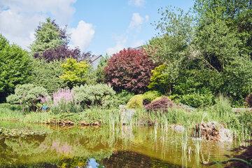 Eine Baumgruppe spiegelt sich im Gartenteich mit kleinem Springbrunnen