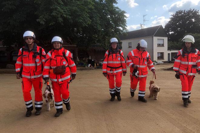 Die Mitglieder der Johanniter-Rettungshundestaffel Bonn/Rhein-Sieg bei der Ufersuche im Hochwassergebiet.
